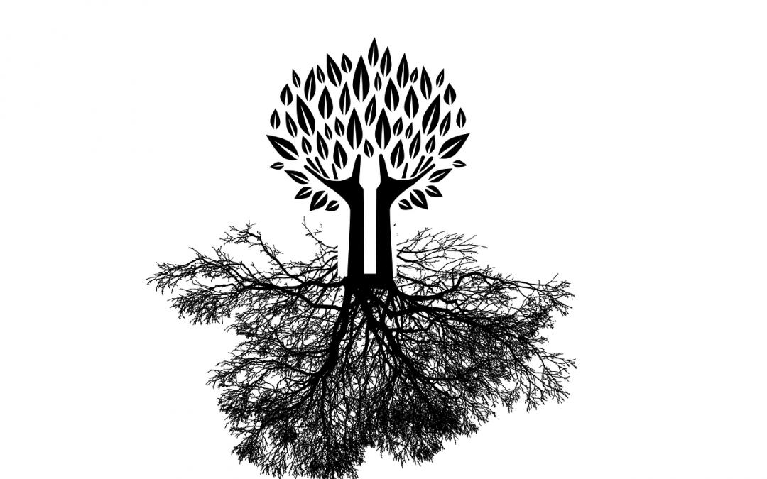 Cómo pasar parámetros al componente raíz de una aplicación Vue.js